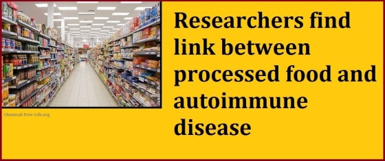 autoimmune disaes linked to food additives