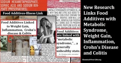 metabolic syndrom link food additives