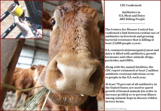 cfl-graphic-antibiotics-in-meat-and-dairy