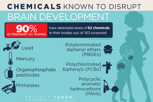 chemicals adversely effect brain development