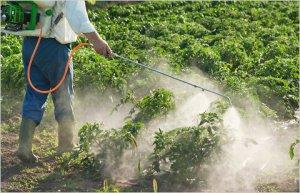 pesticides-spray pesticides