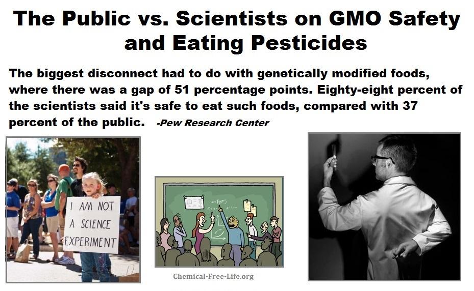 cfl graphic-scientists vs public on gmo-pesticide safety