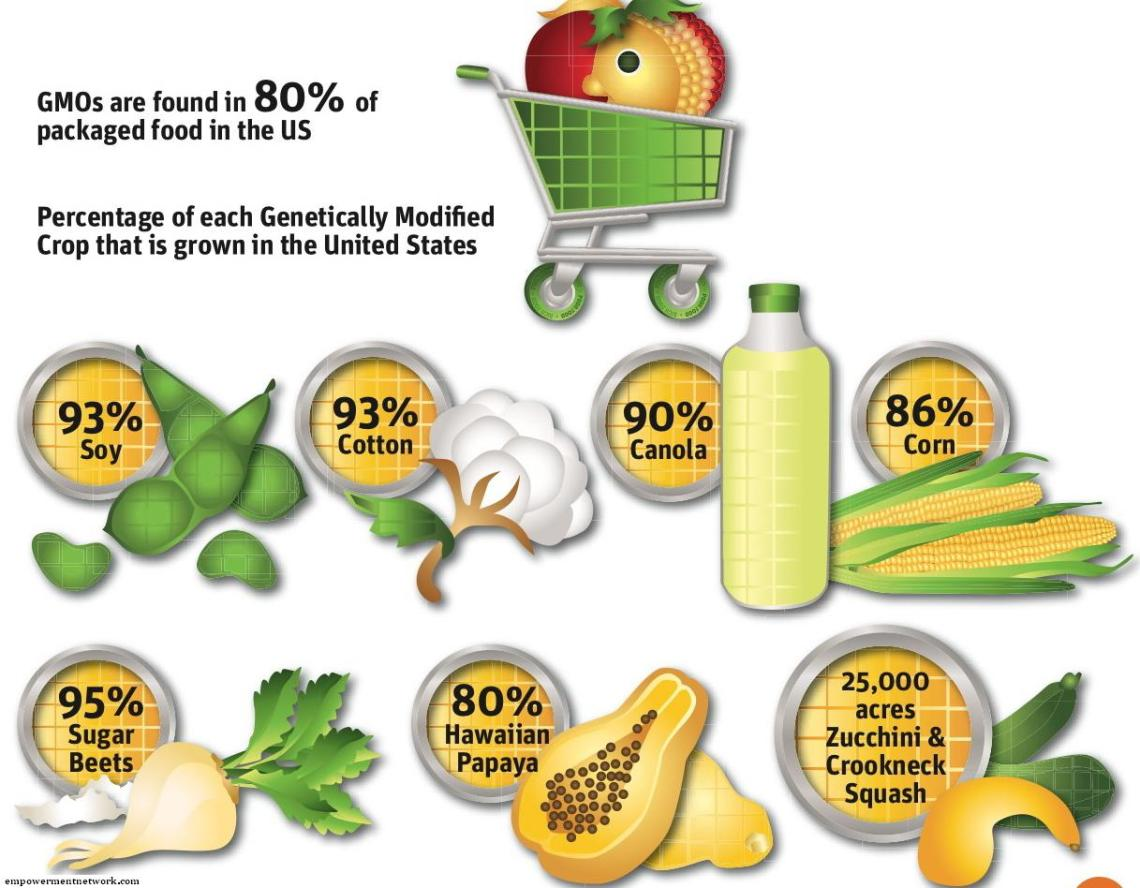 gmo-amount in food graphic