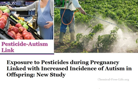 Pesticide Exposure In Pregnancy Linked >> Pregnancy And Chemical Exposure Chemical Free Life