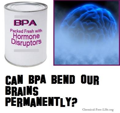 BPA Brain Bending endocrine disruptor