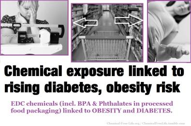 CFL Graphic-BPA Obesity Diabetes