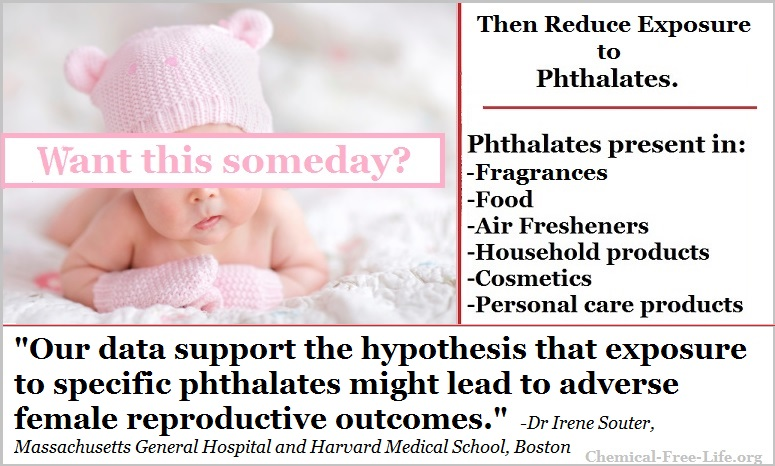 CFL Graphic-phthalates-infertility in women