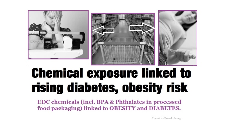 BPA Phthlates chemical exposure obesity diabetes