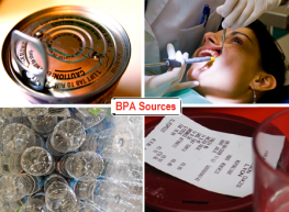 Environmental chemicals-bpa montage